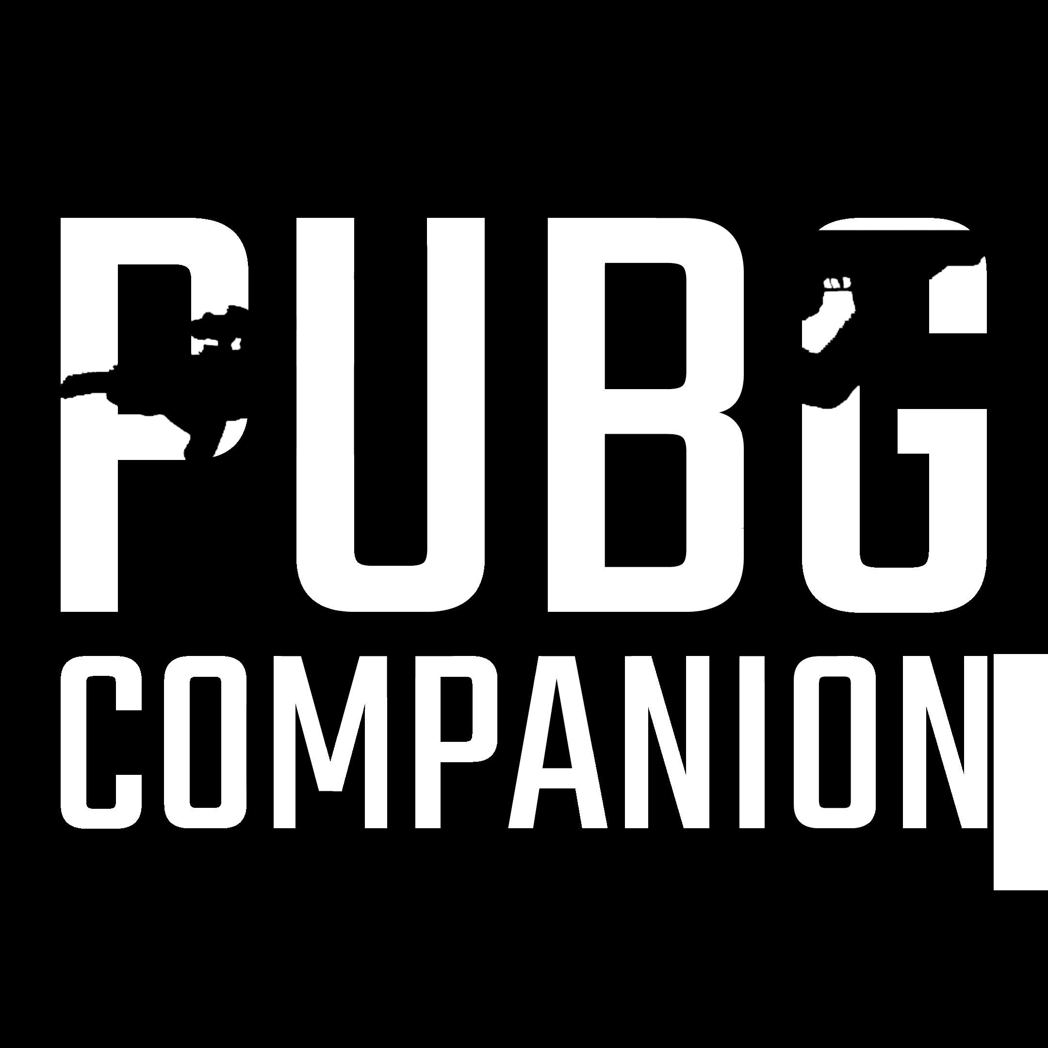 PUBG Companion